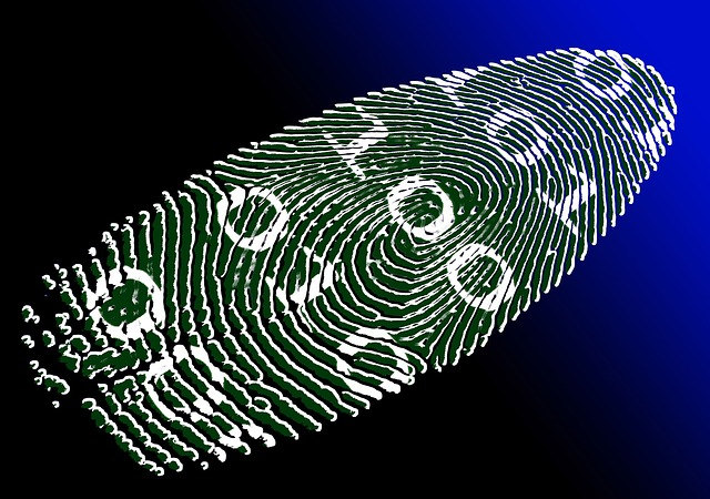 virtual-identity-69996_640