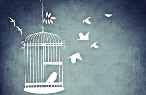 oiseaux_cage